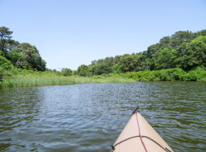view from boat on waterway_west tisbury massaschusetts_cape cod tourism