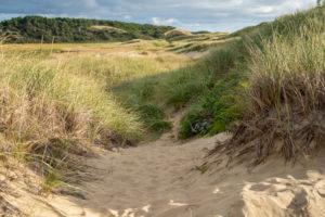 sand dunes and trail in wellfleet ma_wellfleet massachusetts tourism_cape cod tourism