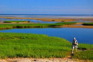 best places to visit in cape cod_beautiful landscape