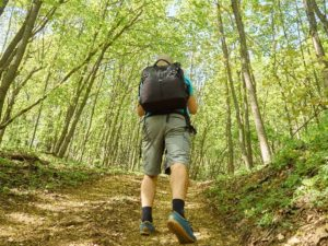 hiking and biking trails cape cod