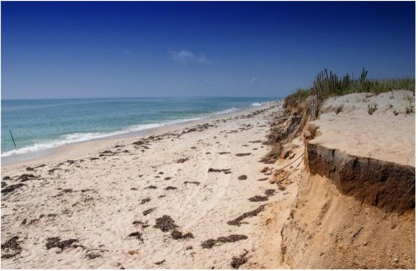 beach in marthas vineyard massachusetts_cape cod day trips