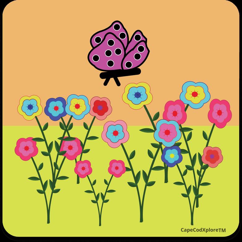 cape cod_icon for gardens
