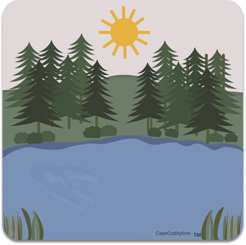 cape cod_icon for kettle ponds
