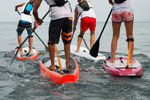 cape cod stand up paddle boarding