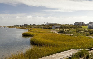 kayaking tours in cape cod_scenic area for kayaking