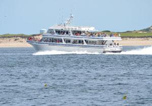 cape cod boat tours