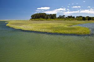 Brewster's Paine's Creek Beach