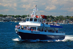 ecotourism in cape cod_sustainable travel in cape cod