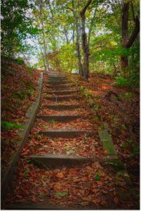 hiking trails 04