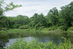 preserve part of sheriff's meadow foundation in martha's vineyard_things to do in cape cod