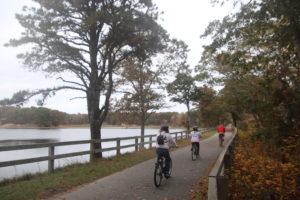 shining sea bikeway_cape cod bike trail