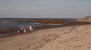 people walking on beach in dennis massachusetts_dennis ma_cape cod tourism