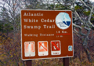 Atlantic White Cedar Swamp Trail sign_hiking in Cape Cod