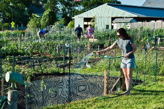 people working in cape cod community gardens