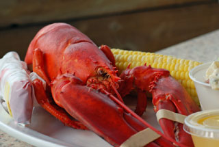 lobster with corn on plate_catering on cape cod