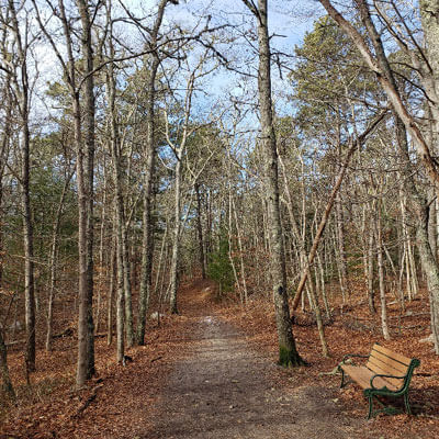 hiking trail in cape cod_best things to do with kids on cape cod_cape cod activities for families