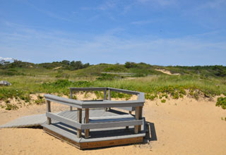 platform on sand dune on cape cod beach_things to do on cape cod