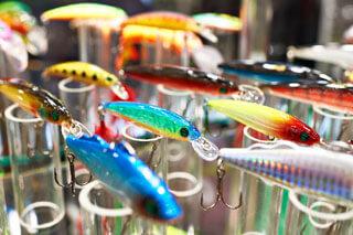 bait shop new 3