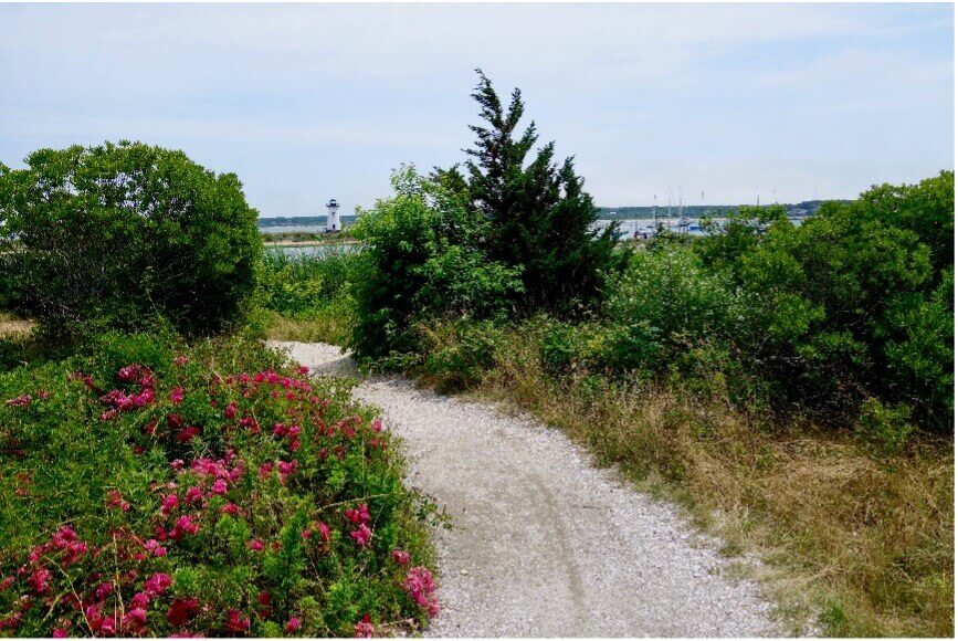 gavel walking trail in cape cod_things to do in cape cod_cape cod hiking