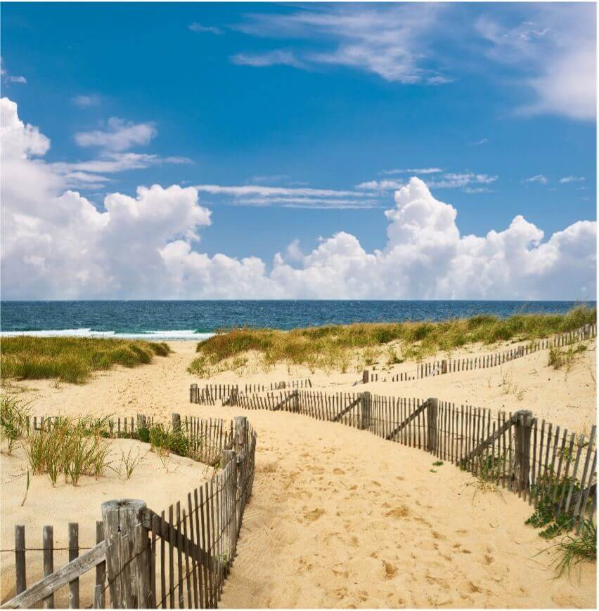 sandy beach shore in cape cod_things to do on cape cod