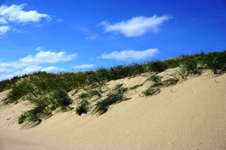 photo of cape cod beach_things to do on cape cod