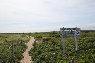 dead neck trail in mashpee cape cod_best hikes on cape cod_cape cod hiking