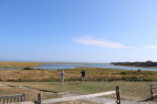 fort hill trail in cape cod_hiking in cape cod_things to do in cape cod