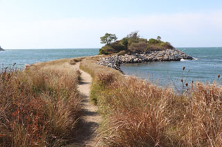 cornelia carey sanctuary_the knob_best hikes on cape cod_things to do in cape cod