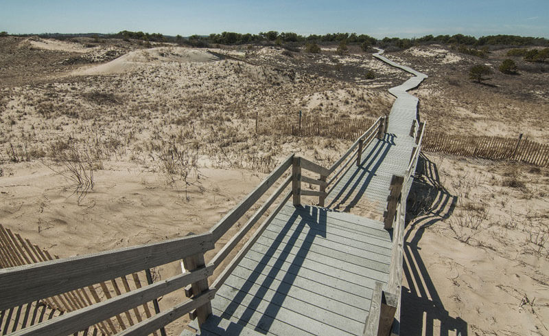 wood boardwalk on trail in cape cod_cape cod hiking trails_things to do on cape cod