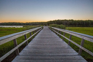 photo of nauset marsh trail_cape cod hiking trails_things to do on cape cod