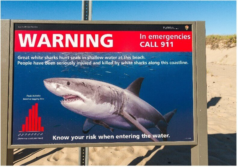 is it safe to swim at cape cod 04