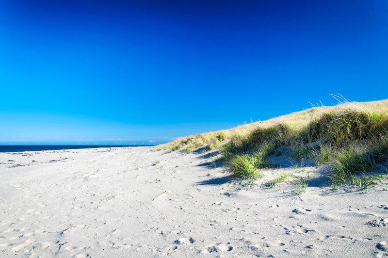 sand dunes near cape cod_cape cod travel tips