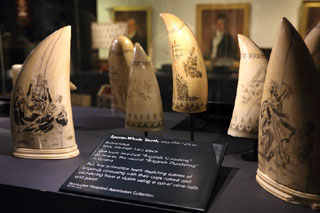 exhibit at nantucket whaling museum_things to do in nantucket_things to do on cape cod