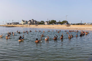 people swimming in inkwell beach_things to do on cape cod