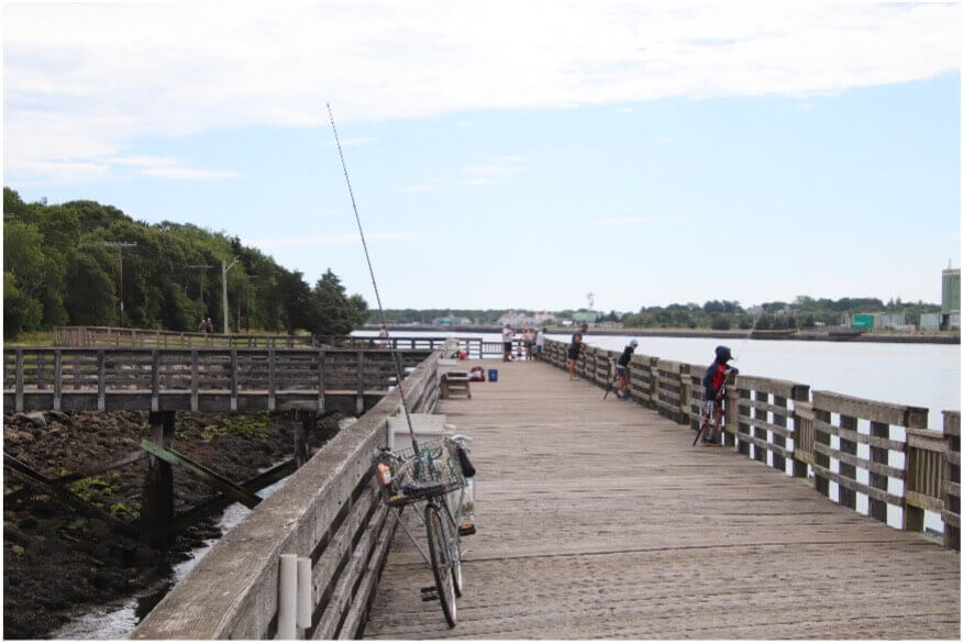 fishing pier at scusset beach state reservation_ things to do on cape cod_ cape cod beaches_ scusset beach state park