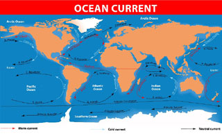 ocean current graphic_vacations at cape cod