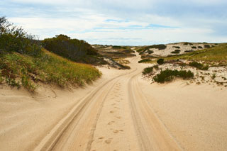 sand dune in cape cod_fall vacations in cape cod
