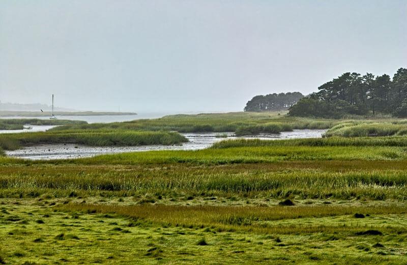 10 best scenic walks in cape cod