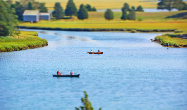 where to kayak in cape cod?